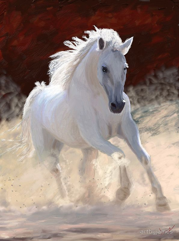 """""""Free Spirit""""  I believe that horses are one of most beautiful things in God's creation."""