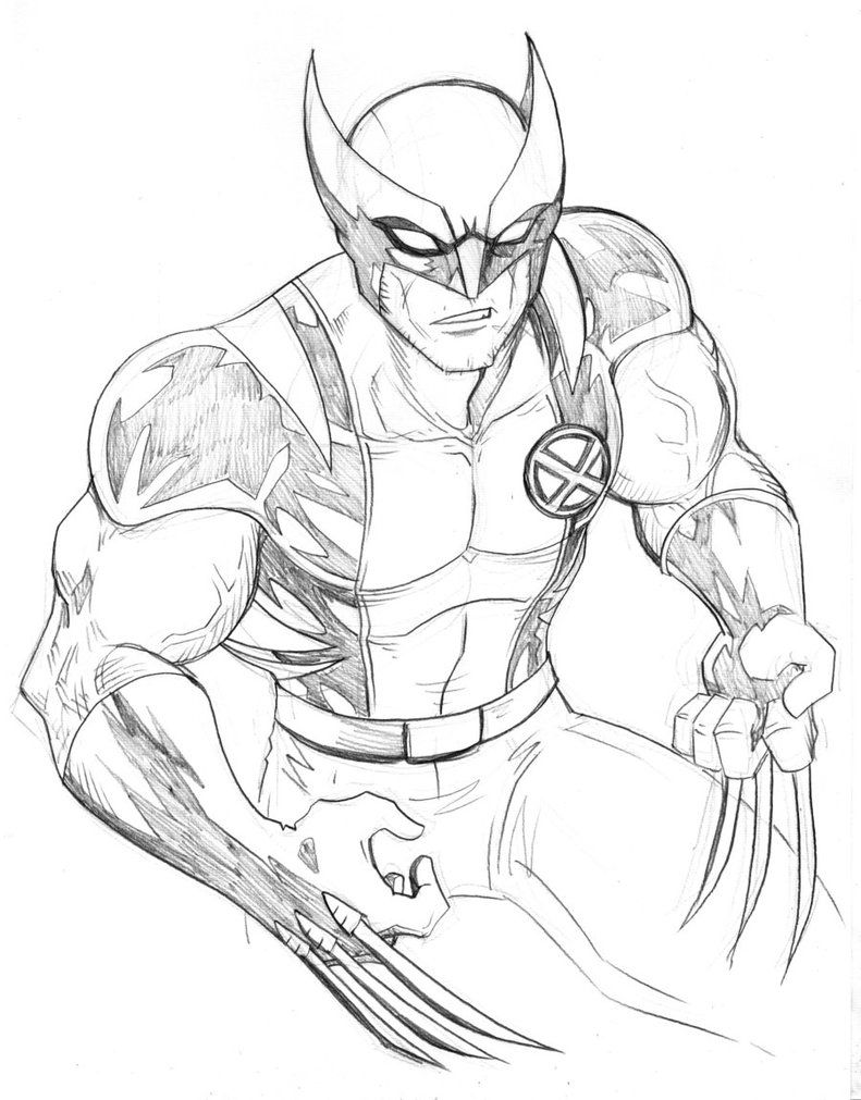 Free Printable Wolverine Coloring Pages For Kids Superman Coloring Pages Animal Coloring Pages Marvel Coloring
