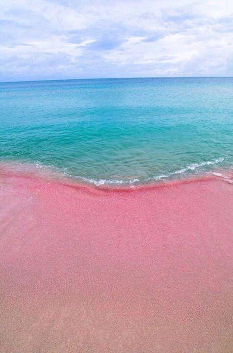 Pinky Beach Pink Sand