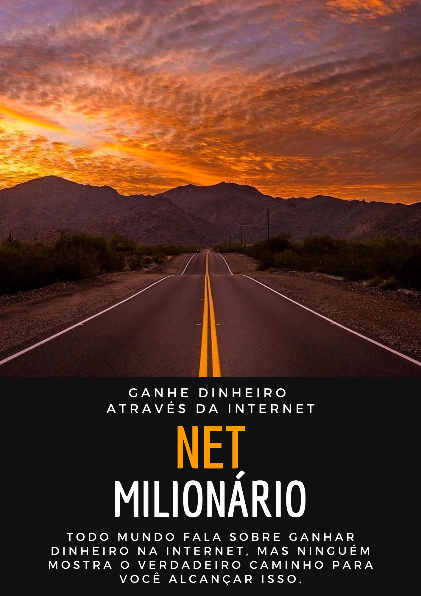 curso net milionario