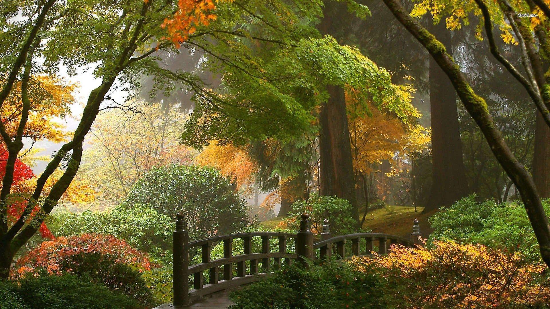 Japanese Garden Wallpaper Stunning 1920x1080 Nature