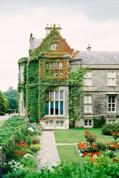 exploring irish roots with family manor houses castles abbeys rh pinterest com