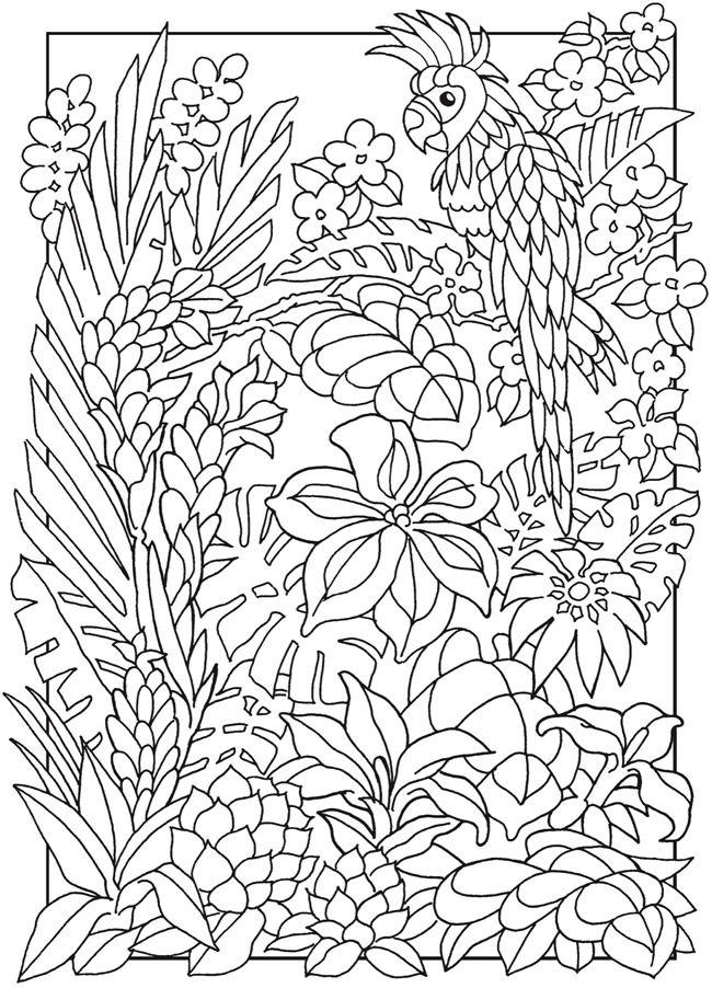Welkom bij Dover Publications | ぬりえ | Pinterest | Colorear ...