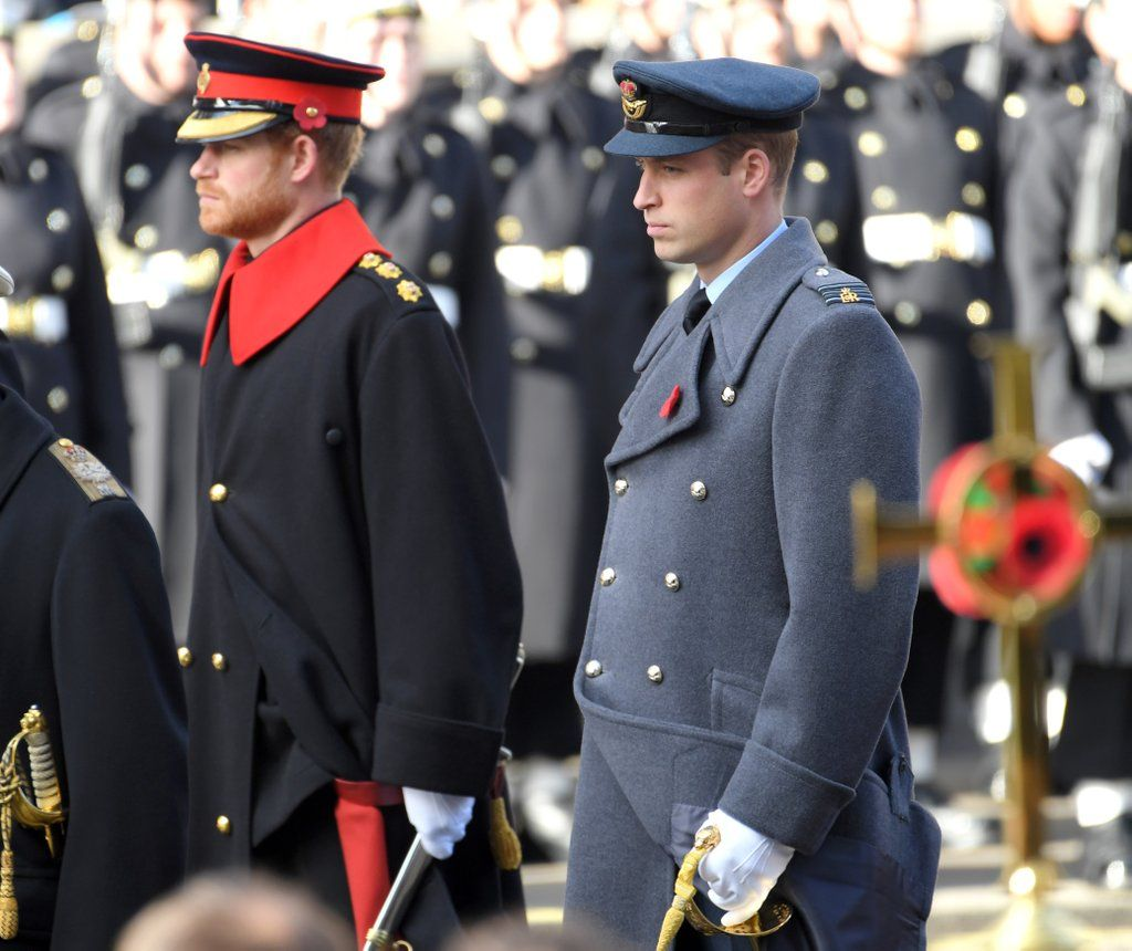 Prince Harry and Prince William Honor Fallen Soldiers on Remembrance Sunday.