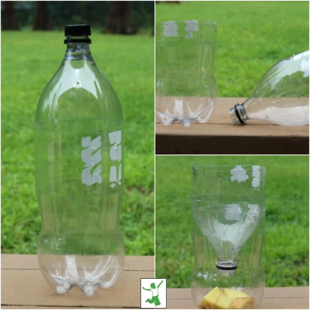 Quick And Easy Homemade Fly Trap Healthy Home Economist In 2020 Homemade Fly Traps Fly Traps Fly Repellant
