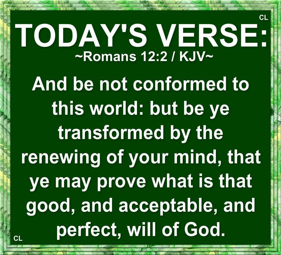 Today S Verse Scripture For God Guidance Roman 3 The Living Bible Paraphrase