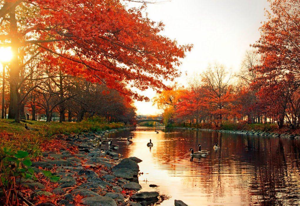 Amanecer en oto o amanecer amar nacer pinterest - Imagenes paisajes otonales ...