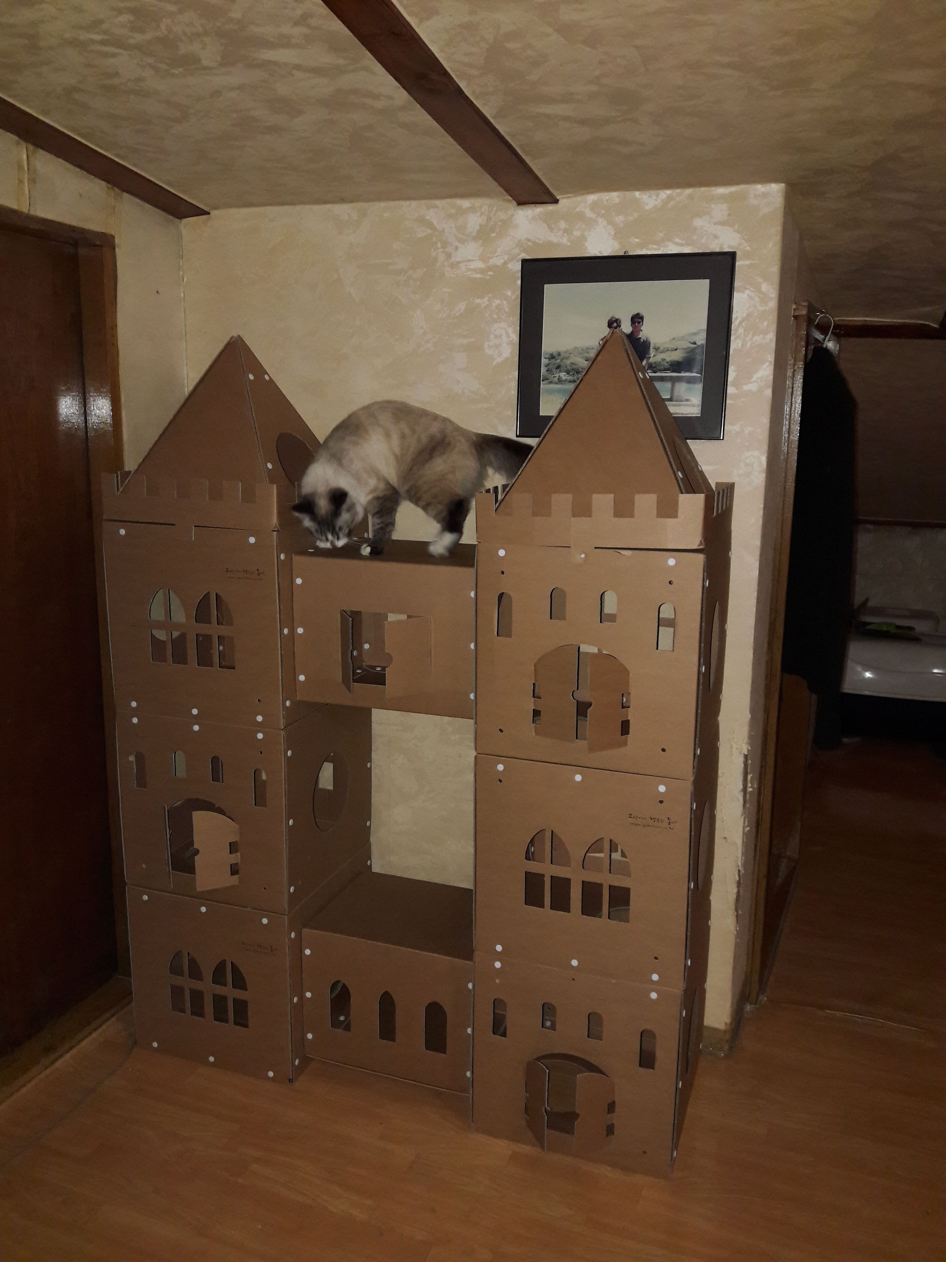 pin by fresco manuel on 144 cat castle cat playhouse cats rh pinterest com