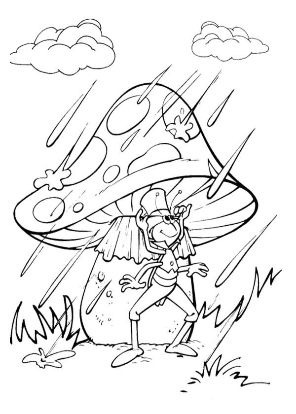 Maya The Bee Friends Exposed To Rain Water Coloring Page