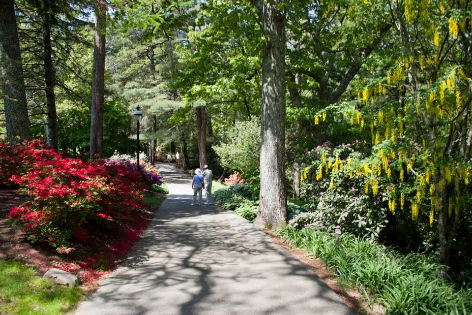 The Prettiest Gardens in Massachusetts Visit