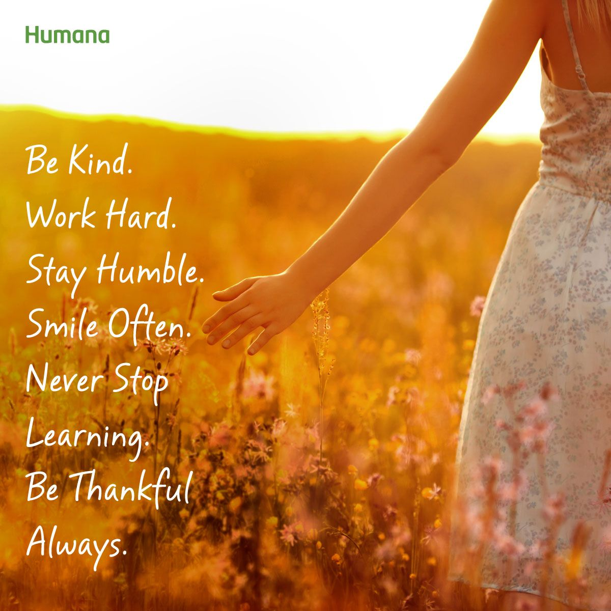 Be kind work hard stay humble smile often never stop
