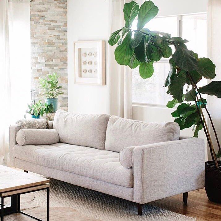 we love the idea of sitting under a tree while still being inside rh pinterest com