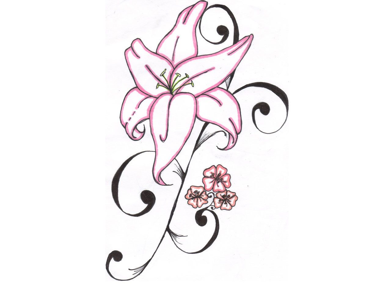 Pink lily httptattoo wallpapers hennas body art pink lily httptattoo wallpapers izmirmasajfo Choice Image
