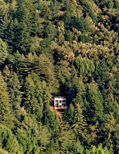 alone in the forest wanderlust places house in the woods home rh pinterest com