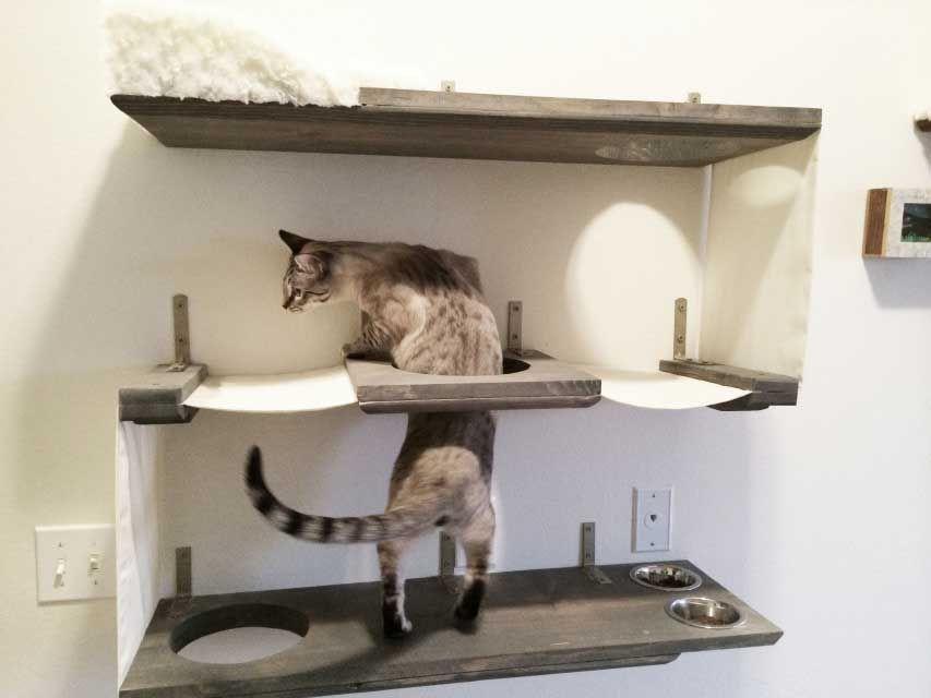 Deluxe Feeder Station Cat Furniture Cat Hammock Cat