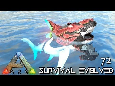 Top Five Megalodon Ark - Circus