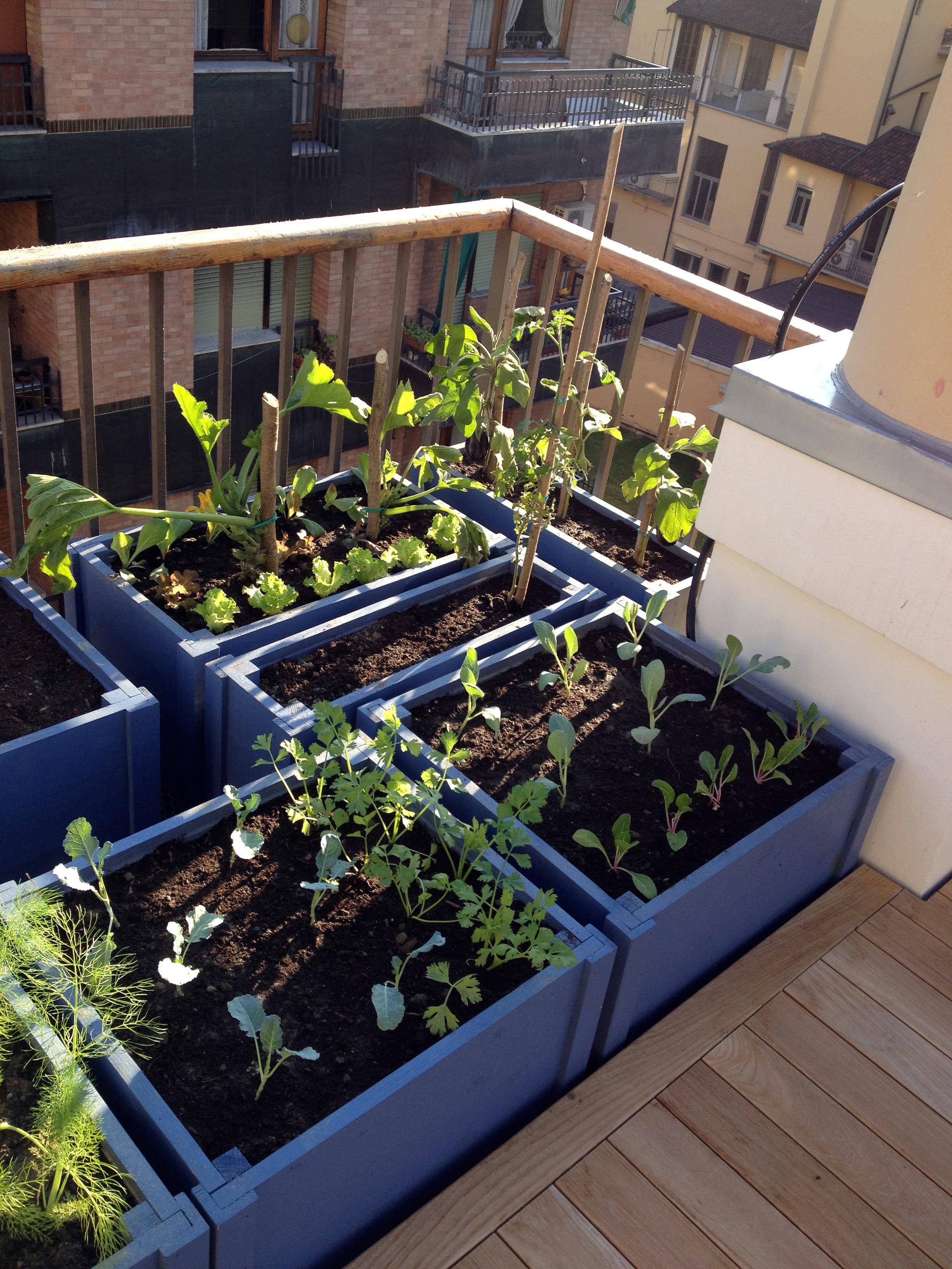Orto in terrazzo | horta | Pinterest | Garden works and Gardens