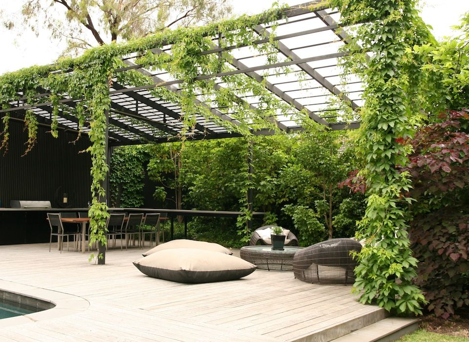Wall Of Greenery With Hanging Vines And A Metal Pergola