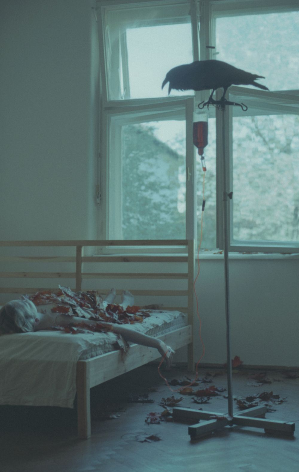 Poetic and Grim Photographs by Laura Makabresku  — The Artbo