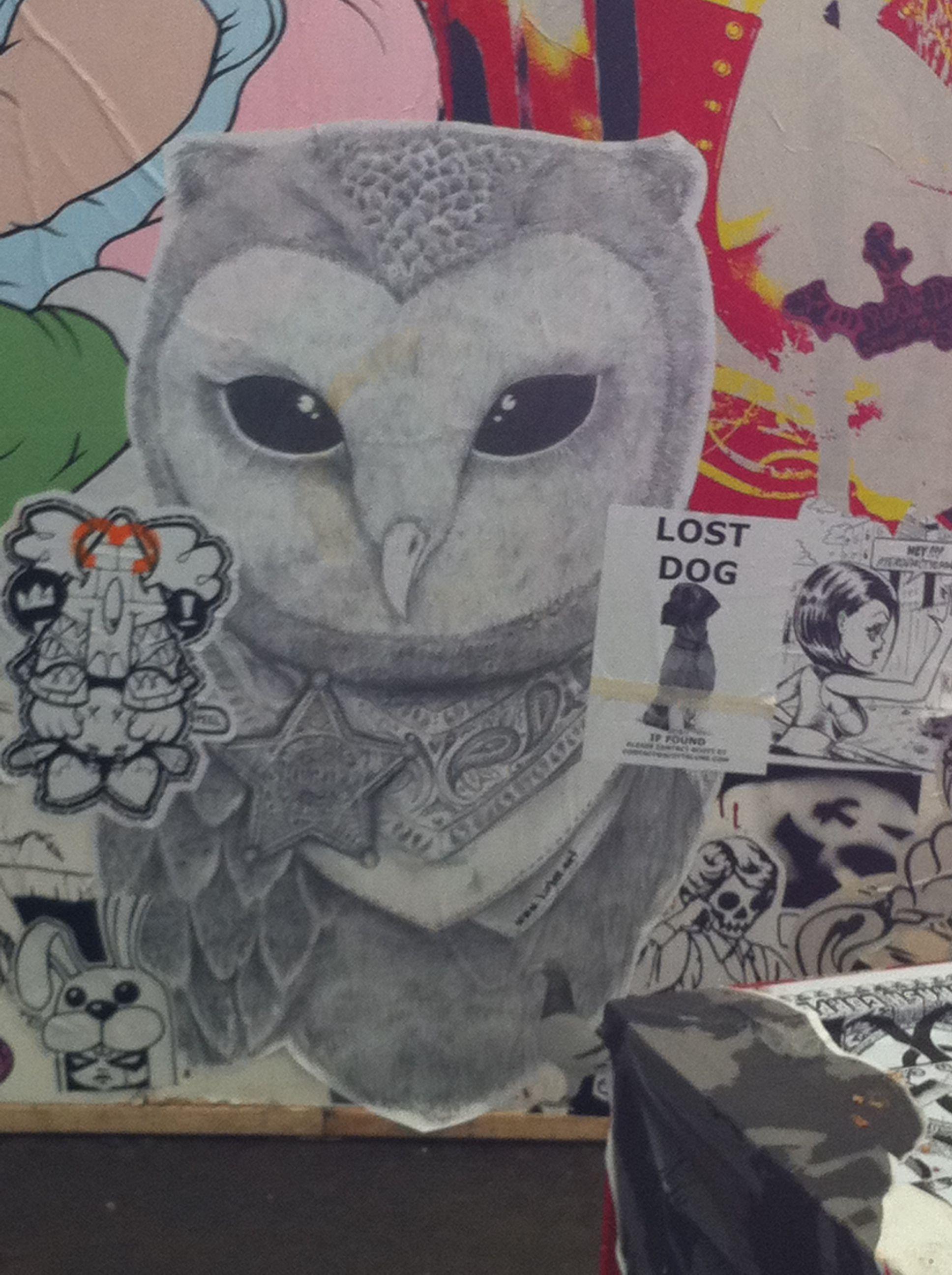 Cockatoo island banksy owl