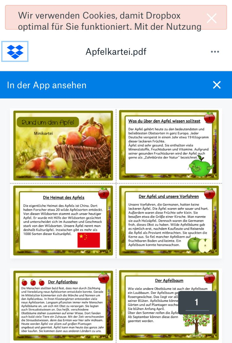 Pin By Ozgul Tuncay On Unterricht
