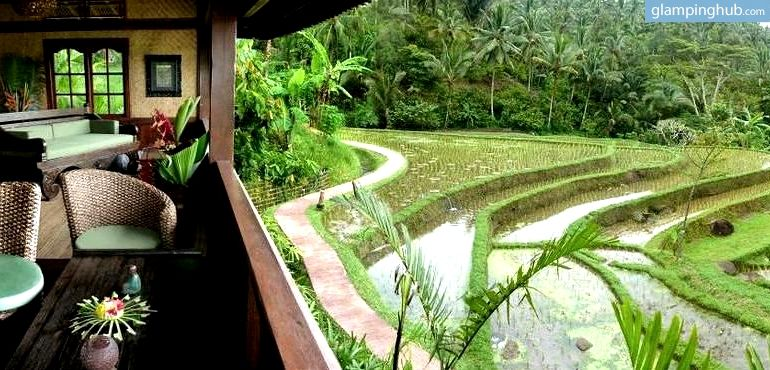 amazing jungle bungalow in rice paddies of bali indonesia rh pinterest com