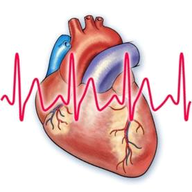 Heart Block Poem!   ★If R is far from P then you have a First Degree.   ★Longer, Longer, Longer DROP! Then you have a Wenkebach.   ★If some P's just don't get through, then you have a Mobitz II.   ★If P's and Q's just don't agree, then you have a Third Degree.