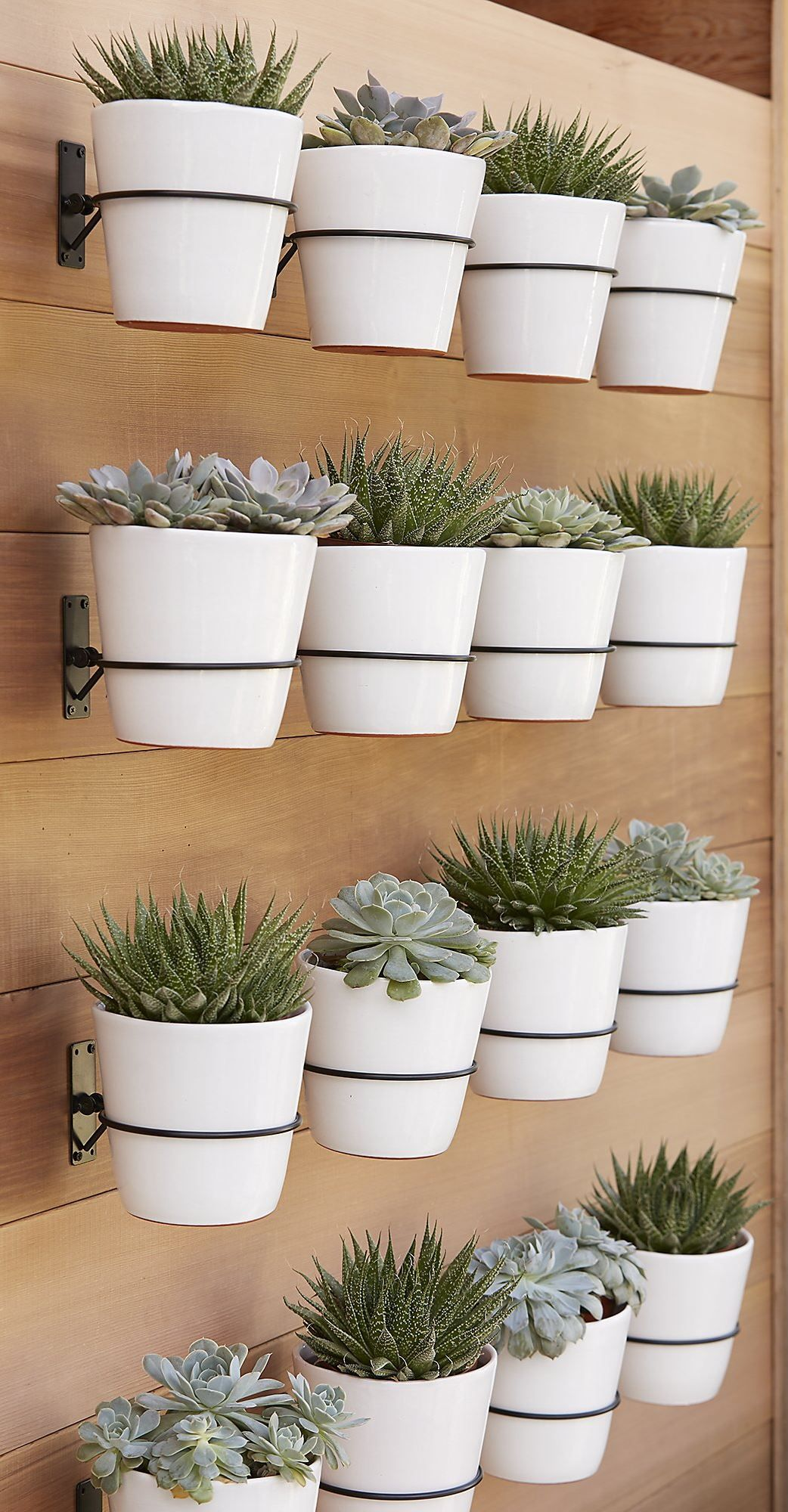 I really love the clean look of this vertical planter. This would be great  for