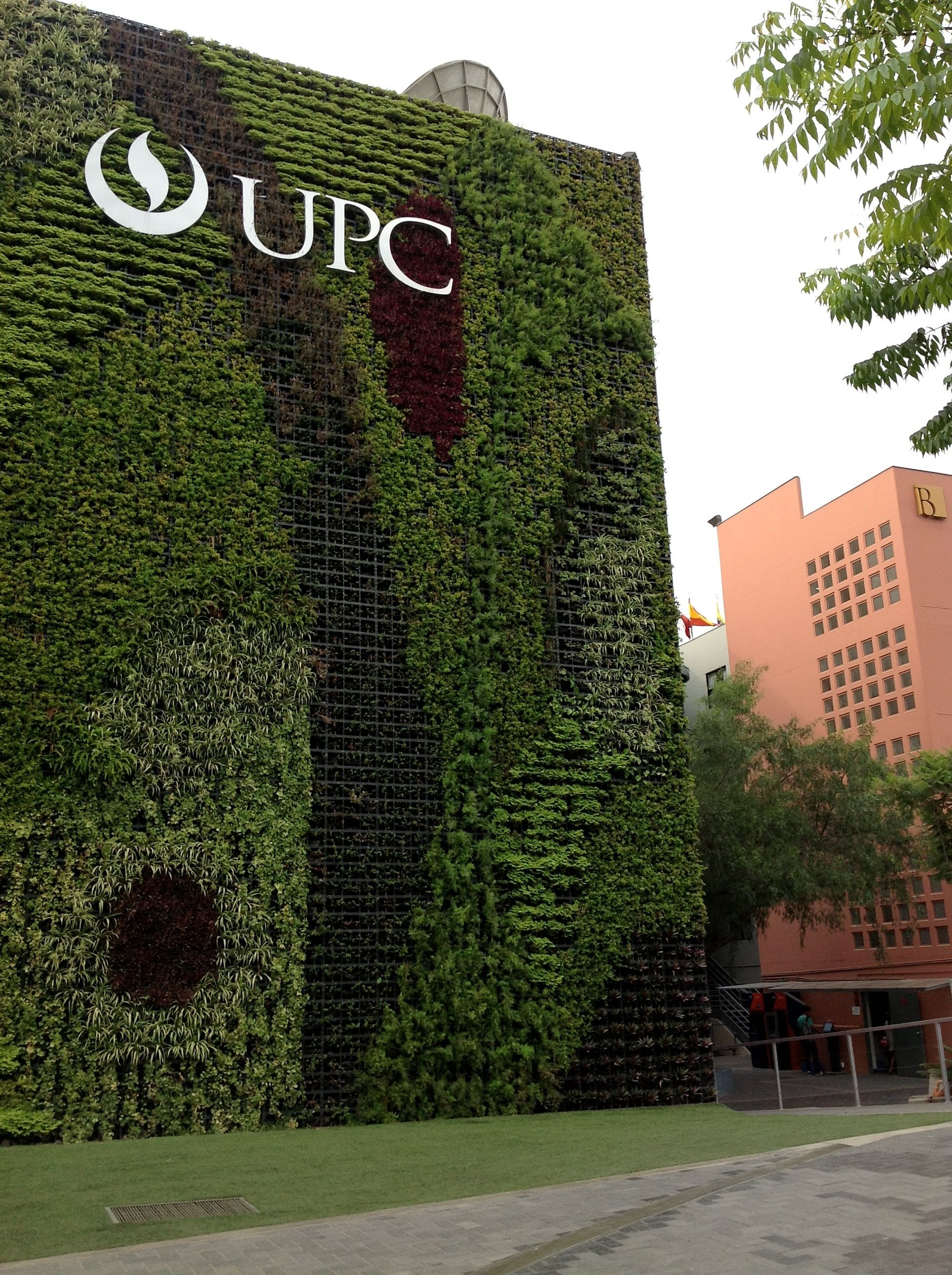 Attraktiv Moos Badematte Referenz Von Classrooms With Vertical Garden At Upc Main