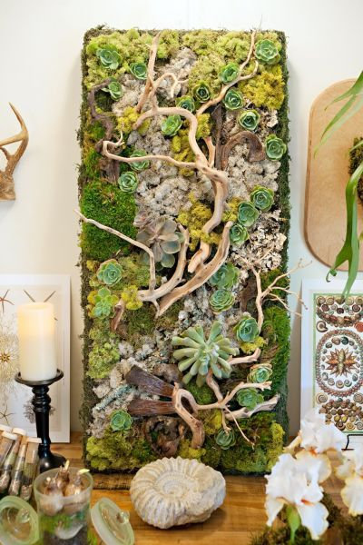 Photo of Embellished Wall Panel Showcases Succulents and Driftwood