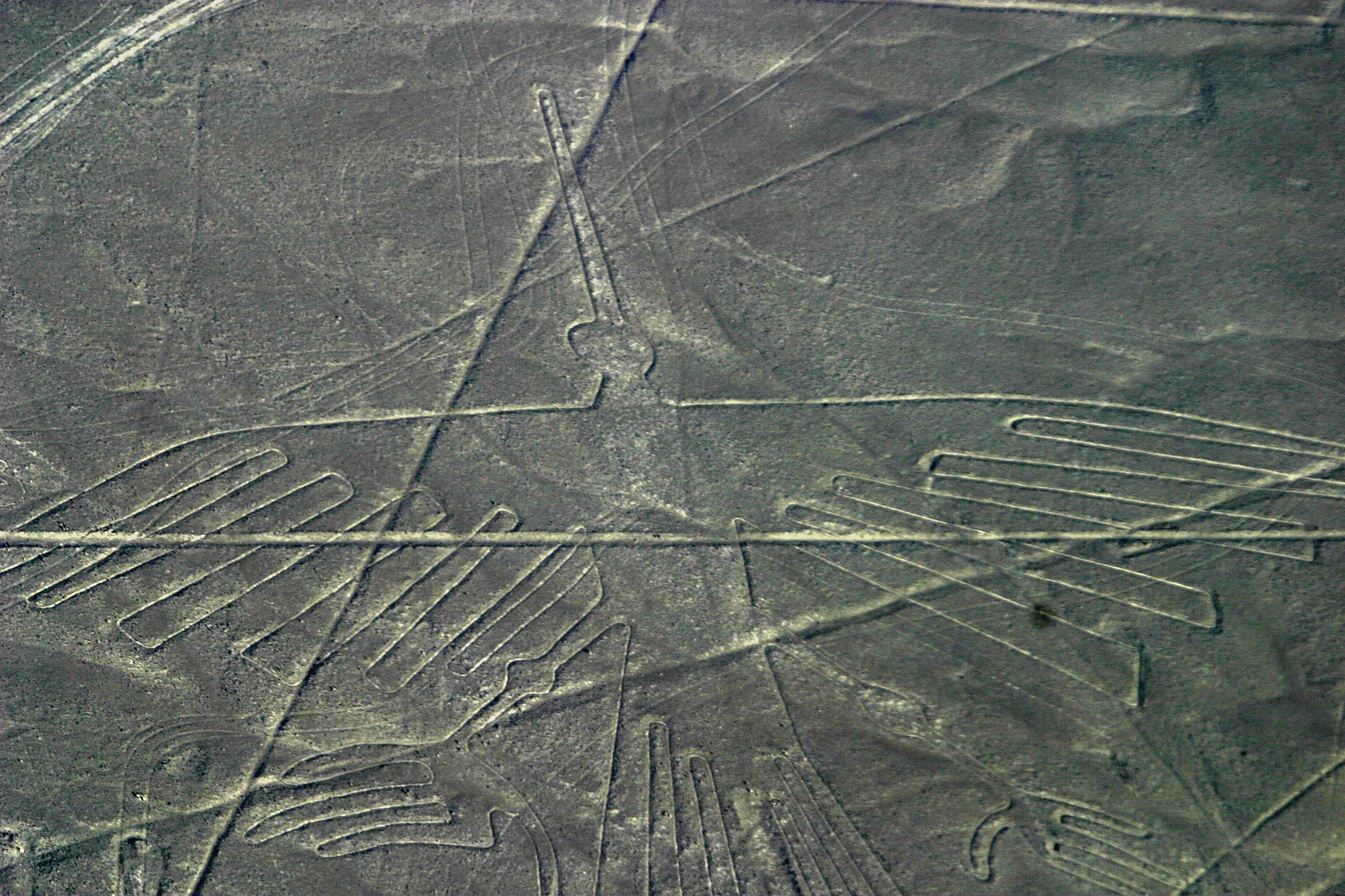 Картинки геоглифы наска