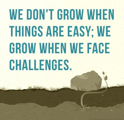 Quotes About Challenges Interesting Be Up To The Challenge Creativity ☼ Innovation  Pinterest . Inspiration