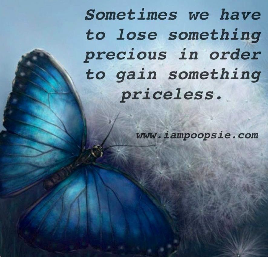butterflies quote | quote via www.IamPoopsie.com ...