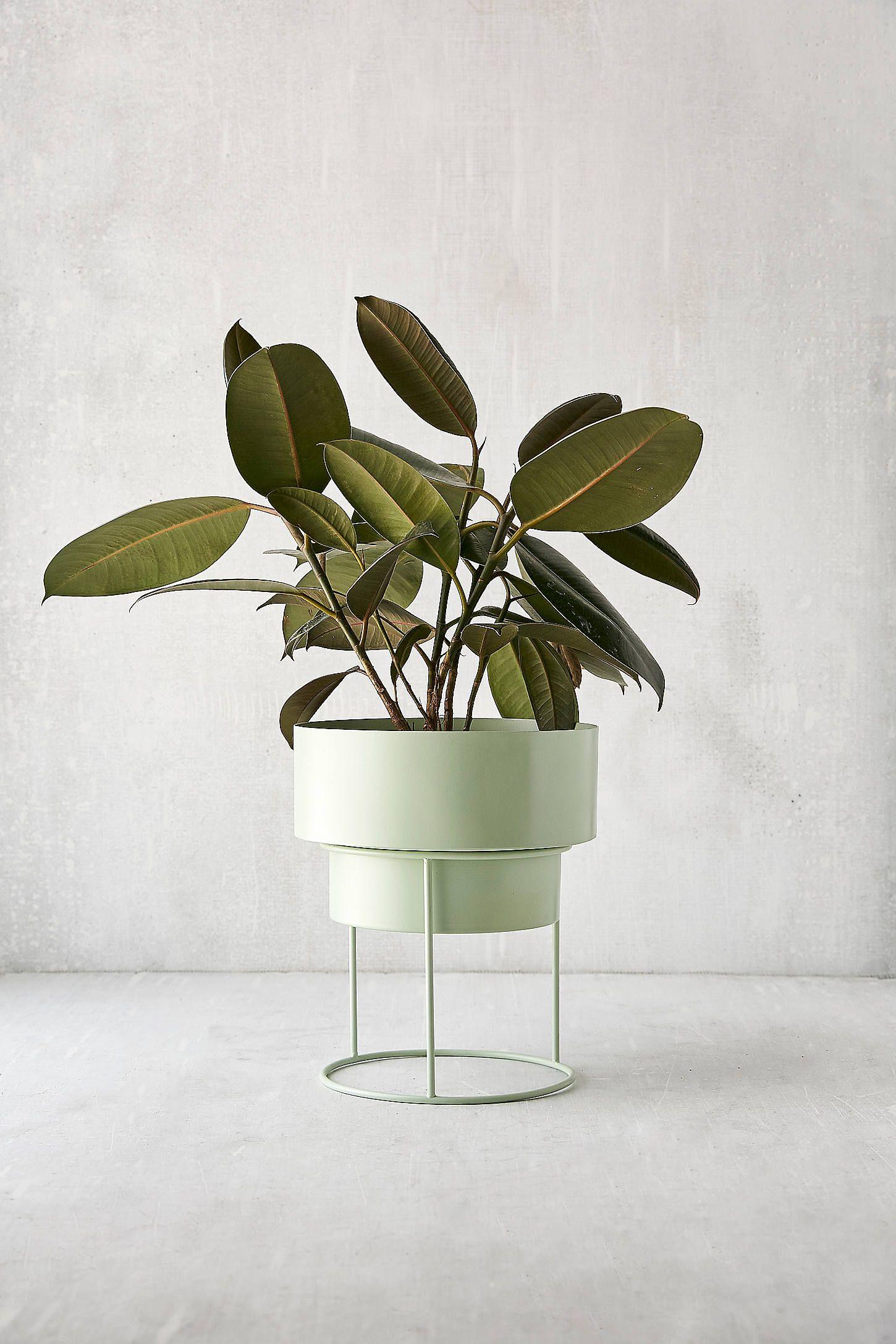 shop noa 8 furnish metal planters planters plants rh pinterest com