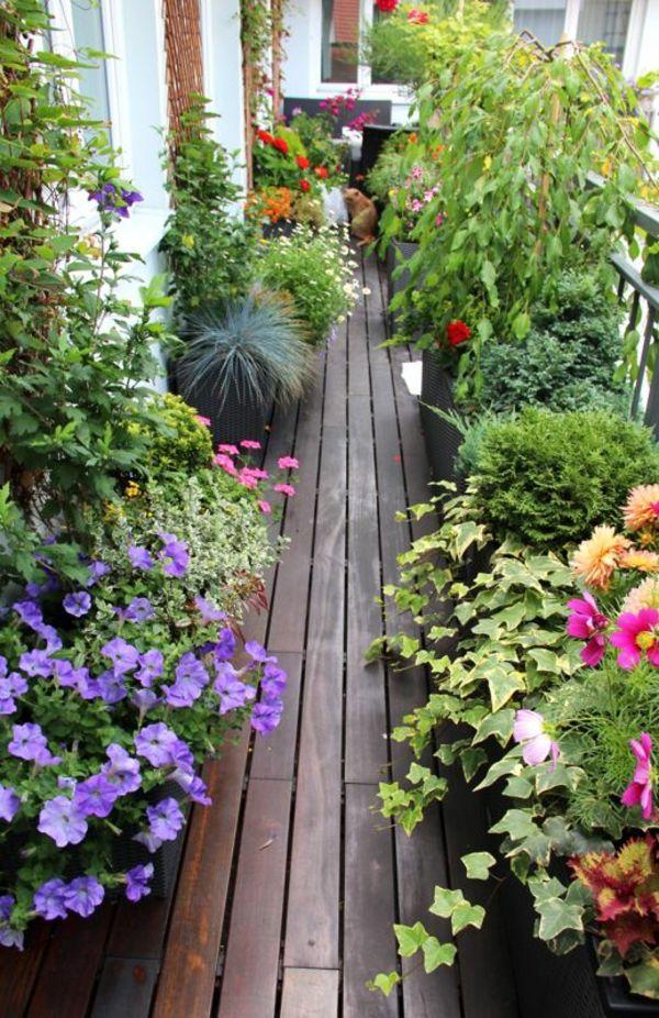 balkon bepflanzen holzterrasse verlegen blumenkasten balkonpflanzen garten balkon pflanzen. Black Bedroom Furniture Sets. Home Design Ideas