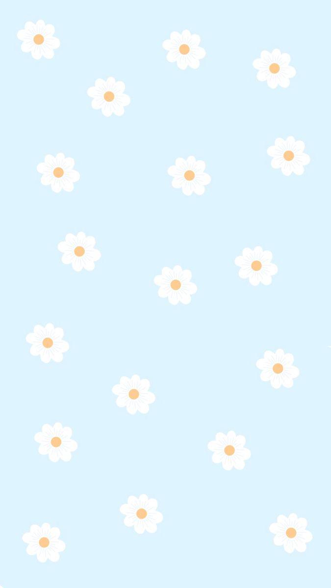 Phone Wallpaper 🤍