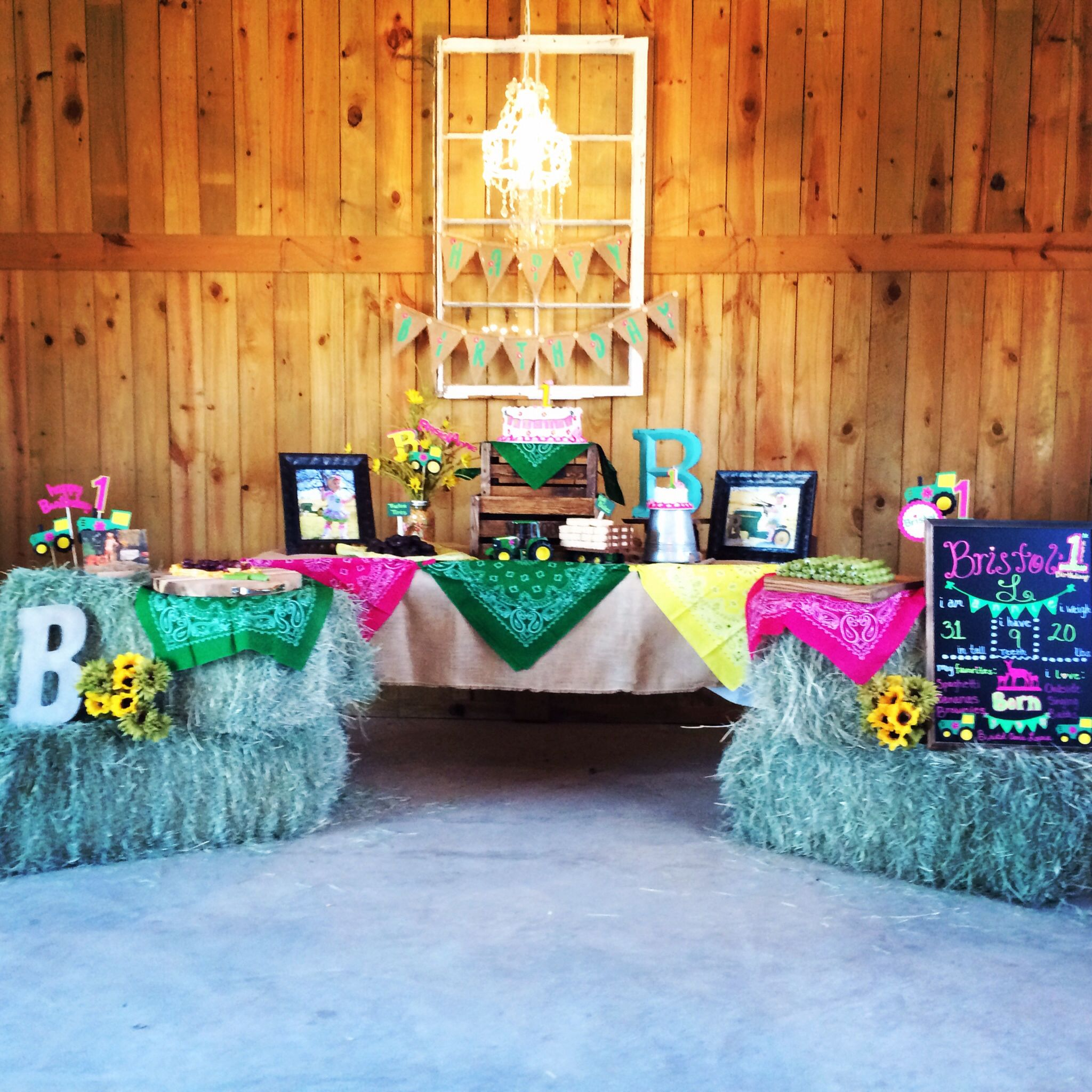 Girls John Deere Birthday Party. Farm Theme Birthday. 1st