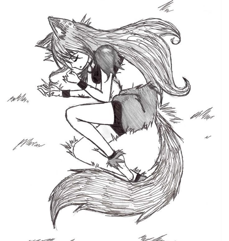 Discontinued Anime Wolf Girl Anime Wolf Wolf Ears