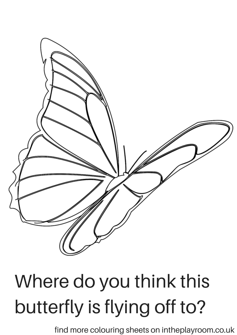 Co colouring in pages butterfly - Where Do You Think The Butterfly Is Flying Butterfly Colouring Sheet