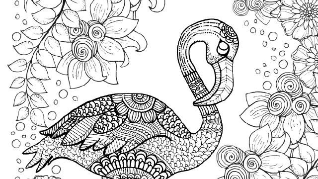 Pin von Barbara auf coloring swan, flamingo | Pinterest