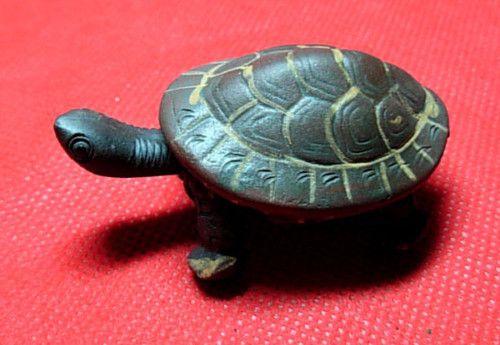 Turtle Tea Pot!
