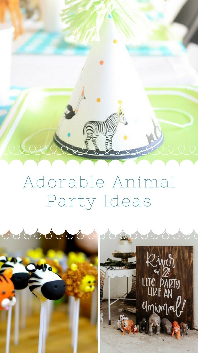 Go wild at your kids next birthday with the great animla party ideas ...