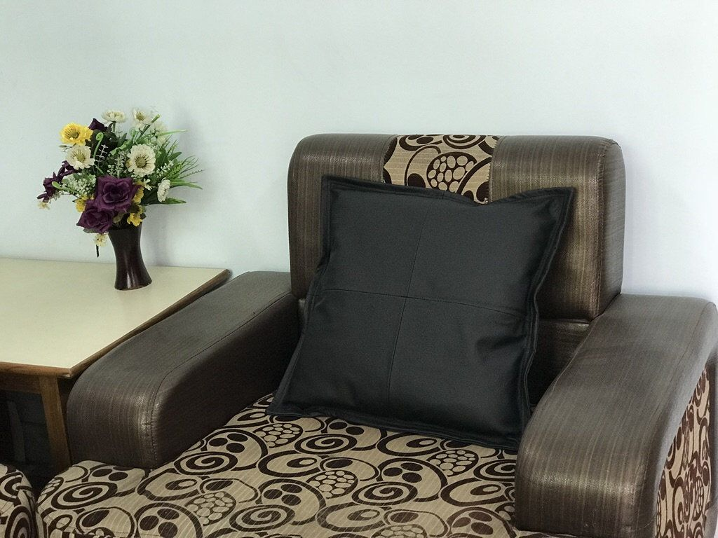 Genuine Leather Cushion Cover Set, 20x20 inches Soft