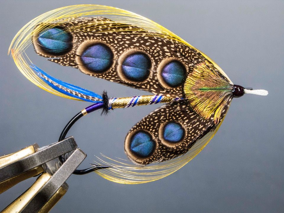 Blue Palette Waslick With Images Fly Fishing Flies Pattern