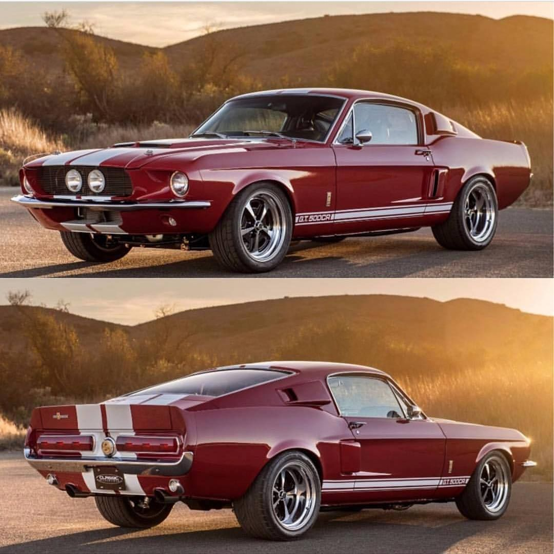 1967 shelby mustang gt 500cr from here to there pinterest cars rh pinterest com