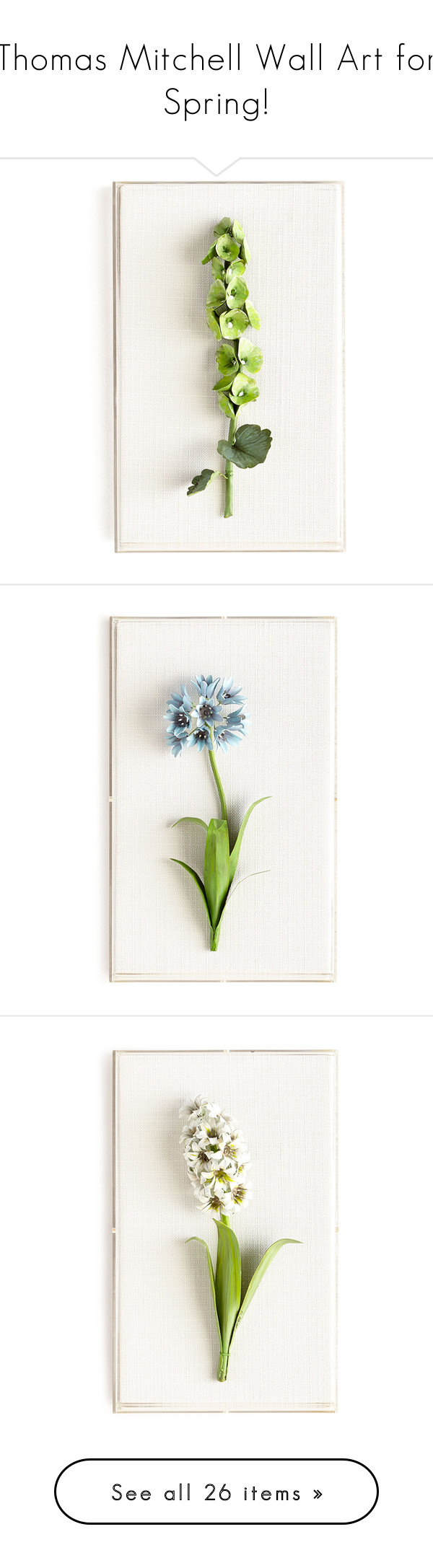 """""""Thomas Mitchell Wall Art for Spring!"""" by kearalachelle ❤ liked on Polyvore featuring home, home decor, wall art, fillers, green, flower wall art, flower home decor, handmade home decor, inspirational wall art and framed wall art"""
