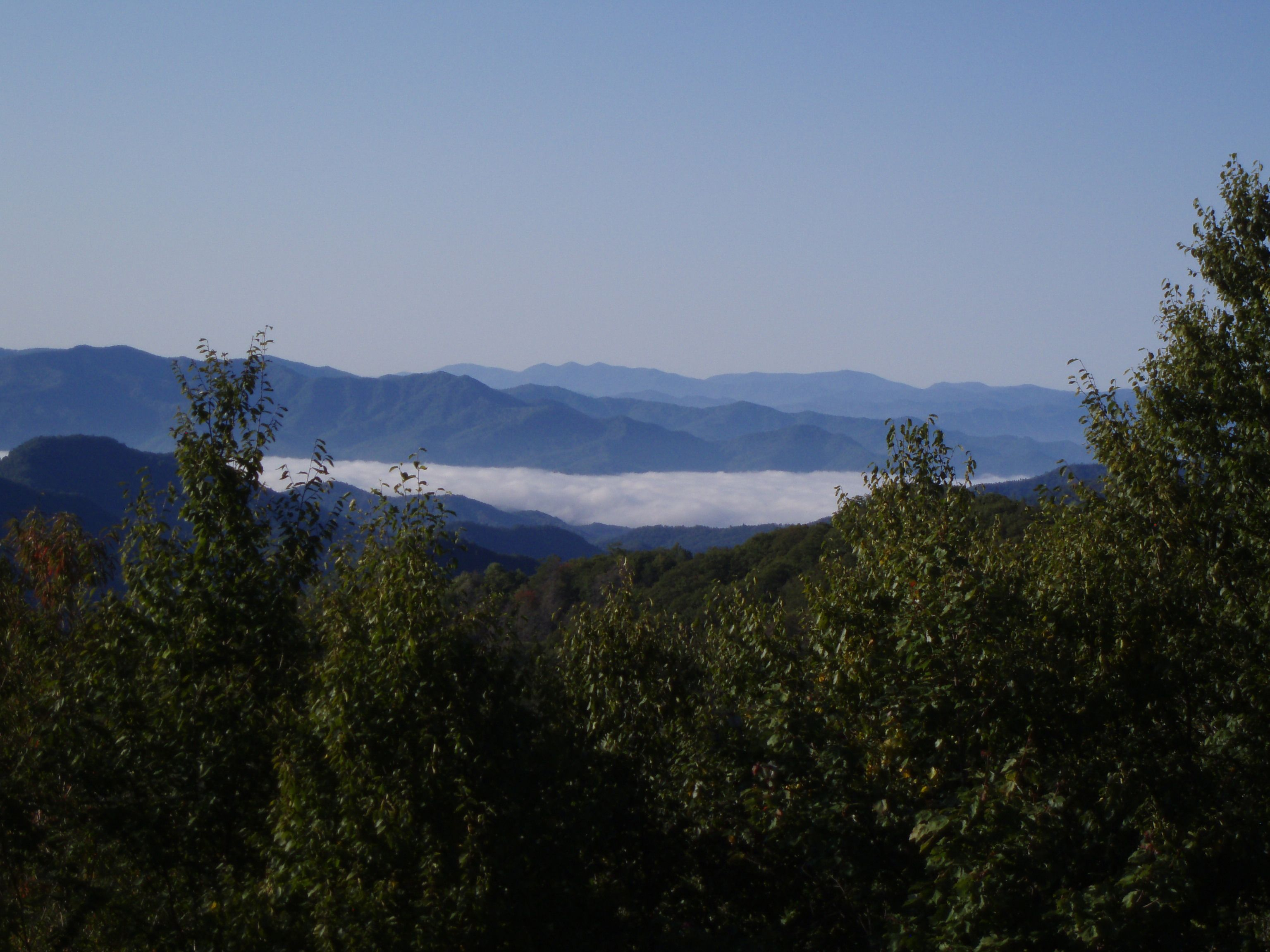 mist in great smoky mountains national park great smoky mountains rh pinterest fr