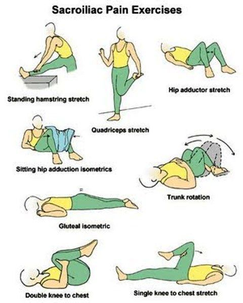 59 Best Images About Back Lower Back Sacrum On Pinterest Manual Guide