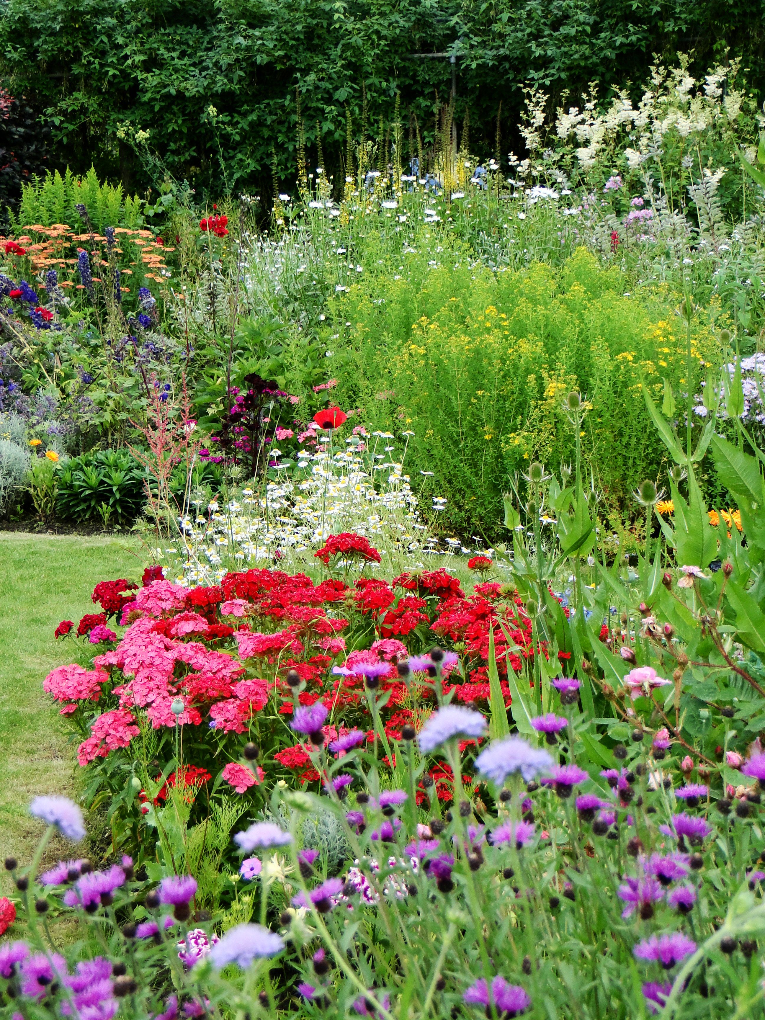 Dream garden Find Your Green Thumb With