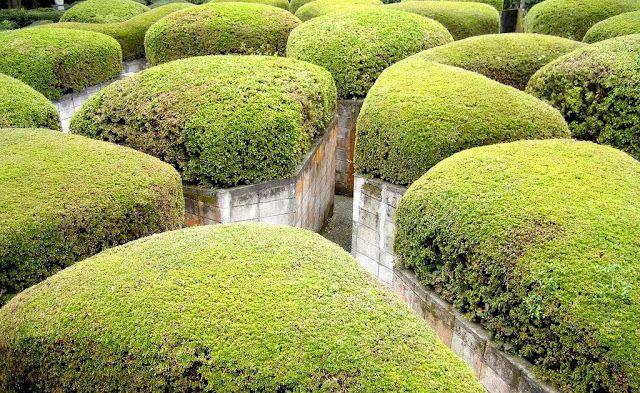 Hakone Japan's Amazing Open Air Museum Kuriositas